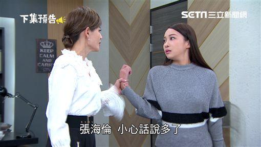 金家好媳婦,陳宇風,張東晴