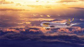 Primera Air,破產,倒閉,停飛,丟包 圖/翻攝自Primera Air臉書