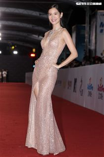 第53屆金鐘獎頒獎典禮星光大道,紅毯女星可說是風格超多樣化,七彩禮服全部上場爭艷。(記者邱榮吉/攝影)