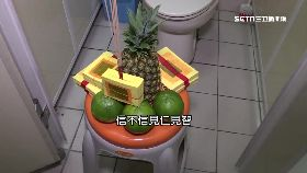 廁所也拜神1800