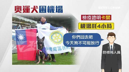 狗奧運台狼犬奪亞洲第二 回台遭扣留機場