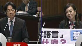民進黨立委蔣絜安質詢行政院長賴清德,何謂台語?(圖/截取直播)