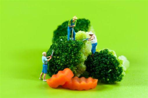 青菜,水煮,油炒,好食課,營養師,林世航圖/翻攝自好食課