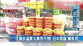 日瘋鯖魚罐1200