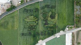 台南好米季稻田彩繪 日本群馬寶寶亮相