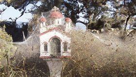 希臘北部的維斯托尼達湖(Lake Vistonida)最近被數以十萬計小型蜘蛛所織的巨網覆蓋,這層總長約1公里的「白紗」。(圖/翻攝自@DebbyDonnelly 推特)