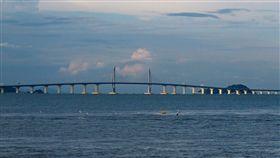 港珠澳大橋(圖/翻攝自維基百科)