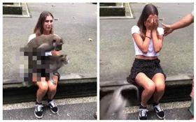 印尼,潑猴,正妹,野戰,愛愛(圖/翻攝自YouTube)