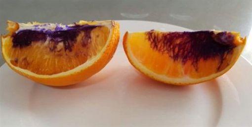 澳洲,柳丁,變色,水果,果肉推特