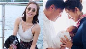 31歲香港女星李美慧(原名李斯庭),生下女兒小糖心,曬一家3口合照。(翻攝IG)