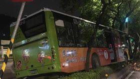 台北,277,公車,分隔島,路樹,大都會客運。翻攝畫面