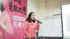 劉曉玫競選廣告 盼喚起鄉親重新思考