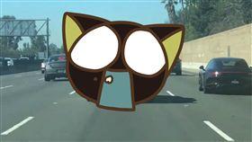 高速公路,司機,洛杉磯,萬聖節,裝飾,鮮血,屍體,扮裝 圖/翻攝自LiveLeak