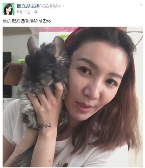 簡立喆、龍貓/翻攝簡立喆臉書、Youtube