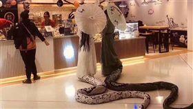 萬聖節扮演「白蛇傳」裡頭的白蛇、青蛇。(圖/翻攝自臉書社團「爆廢公社」)