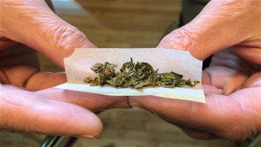 加拿大以舉國之力 進行大麻合法化實驗加拿大自10月17日大麻全面合法化,所有加拿大人,不論是否心甘情願,都已置身在一場涉及社會、經濟、生活、法律、醫學各層面大麻合法化實驗之中。中央社記者胡玉立多倫多攝 107年10月21日