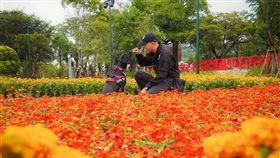 正妹女警領軍到花博拍網美照。(圖/翻攝臉書TCPB 局長室)