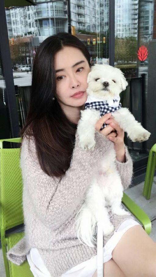 王祖賢(圖/臉書)
