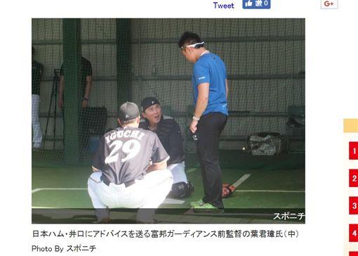 ▲葉君璋(中)參加日本火腿秋訓研習。(圖/截自日本媒體)