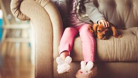女孩,小狗,寵物(圖/翻攝自pixabay)