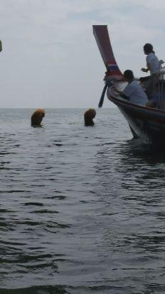 海邊驚見半人半猿 伴詭異笛聲嚇遊客(圖/翻攝自Jemayel Khawaja臉書)