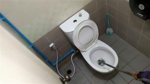 泰國,蟒蛇,睪丸,馬桶,廁所(圖/翻攝自springnews)