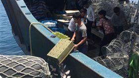 陸籍漁船越界捕魚遭查獲(2)中國大陸正值海洋伏季休漁期間,澎湖海巡隊21日查獲一艘陸籍漁船在澎湖花嶼海域越界捕魚,船上所捕獲的500公斤漁獲全數海拋。(澎湖海巡隊提供)中央社 107年5月21日