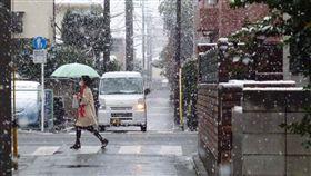 東京,下雪,初雪,11月雪 圖/中央社