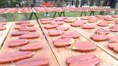 竹北烏魚文化節 踩街遊行熱鬧登場
