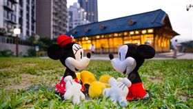 台灣華特迪士尼,米奇,米妮