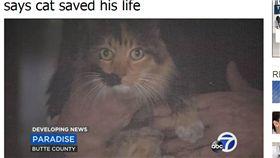 「牠救了我一命!」加州野火肆虐 老爺爺堅持救貓逃過死劫 圖/翻攝自abc30