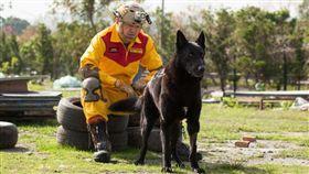 新北,消防署,特搜隊,搜救犬,退役,除役,認養(圖/翻攝畫面)