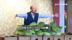 瑜買陸水果1800