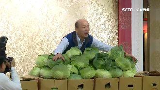 北農韓總進口陸蘿蔔 農民嘆:怎生存