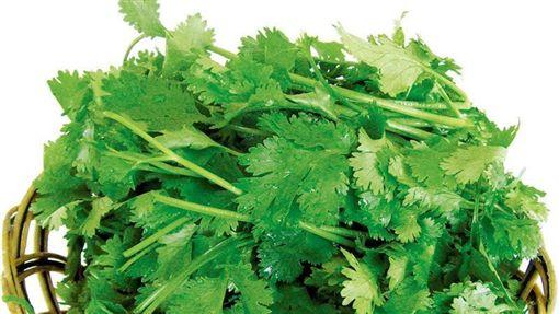 長期攝取香菜,可清除心、肝、肺、腎與消化道裡的有毒重金屬。(圖/翻攝百度百科)