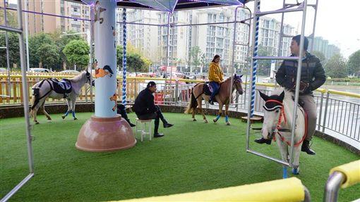 中國,馬,旋轉木馬,虐待動物,遊樂設施 (圖/翻攝自網易新聞)