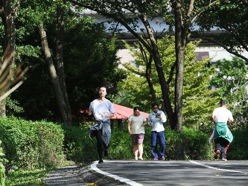 東北季風減弱 台北好天氣(1)中央氣象局指出,24日起東北季風減弱,降雨範圍縮小,多為陽光露臉的天氣,台北市一處公園,市民在陽光下跑步。中央社記者施宗暉攝 107年11月24日