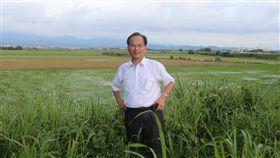 台南,市長,敗選,蘇煥智(臉書)