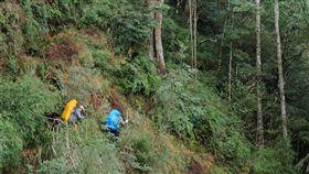 森林護管員工作重又危險  這些人仍願投身森林護管員薪資不高、工作負擔重又具危險性,不過每逢南投林管處招考,總吸引當地原住民、熱愛山林人士、農業、森林相關從業人員或畢業生報名。圖為森林護管員組隊入山巡護。(南投林管處提供)中央社記者蕭博陽南投縣傳真  107年11月26日