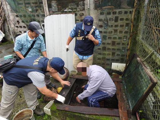 違法繁殖保育類野生動物食蛇龜,遭警方查獲。(圖/翻攝畫面)