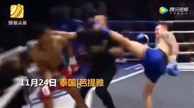 (圖/翻攝自騰訊視頻)泰國,泰拳,裁判,KO,苟大奎