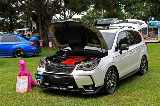 Subaru SUYA Club大會師(圖/車訊網)