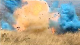 損失超過2.5億!公布寶寶性別太嗨 他一槍引爆森林大火 圖/翻攝自YouTube