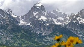 Patagonia Taiwan,美國,環保,捐款(圖/翻攝自Patagonia Taiwan臉書)