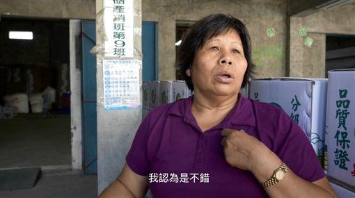 吳音寧遭解職「無言反擊」 深夜PO影片曝農民心聲(圖/翻攝向左走影像工作隊YouTube)