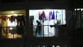 虐殺,毆打,大陸,毛小孩,狗狗,黃金獵犬 https://www.pearvideo.com/video_1484727