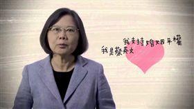 同性婚姻,同婚,婚姻平權,綠黨,民進黨,王浩宇,尤美女