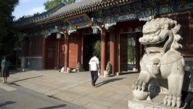 北京大學 維基百科