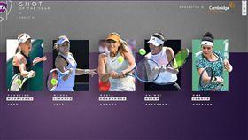 ▲WTA年度好球票選。(圖/取自WTA官網)