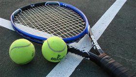 網球(翻攝自維基百科)